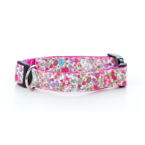 Teddy Dog Collar