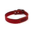 Red Cotton Webbing Dog Collar 2