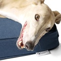 The GRWE Big Memory Foam Dog Bed - Navy 7