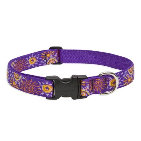 Sunny Days Lupine Dog Collar