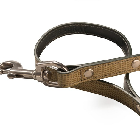 Chelsea Leather Dog Lead – Musgo & Green 2