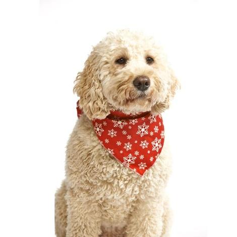 Large Snowflake Dog Bandana – Red 2