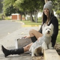 Silver Bliss Baby Alpaca Dog Jumper 3