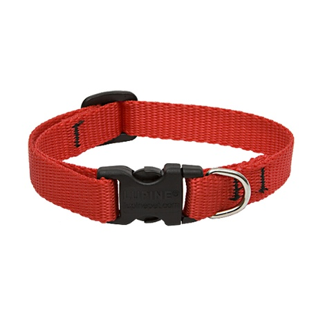 "1"" Width Red Lupine Dog Collar"