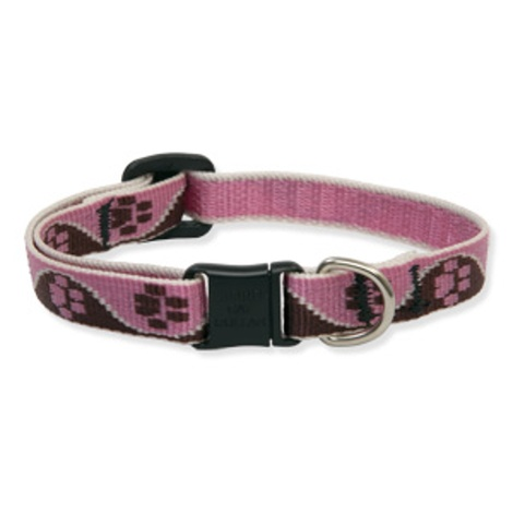 "3/4"" Width Tickled Pink Lupine Dog Collar"