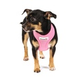 Airmesh Dog Harness – Pink 5