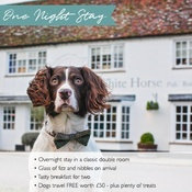 PetsPyjamas - The White Horse Exclusive One Night Stay Voucher