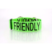 Friendly Pet Collars - Adjustable Green Friendly Dog Collar