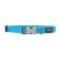 Red Dingo Plain Dog Collar - Turquoise