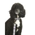Wesley Dog Lead 2