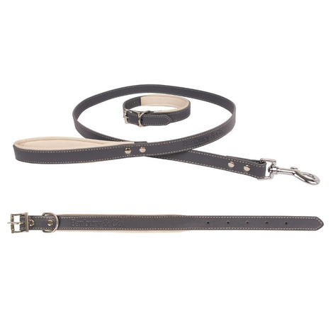 Luxury Dog Collar & Lead Set