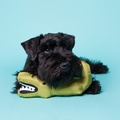Aretha the Alligator Squeaky Plush Dog Toy 9