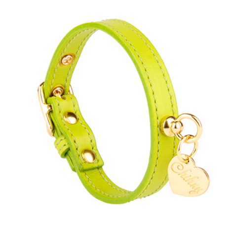 Green and Gold Leather Collar