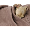 Double Fleece Dog Blanket - Mocha 2