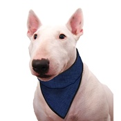 Aqua - Dog Cooling Bandana in Pacific Blue