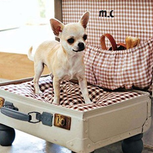 WHISK YOUR CHIHUAHUA AWAY