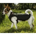 Chelsea Winter Warmer Dog Coat - Green 3