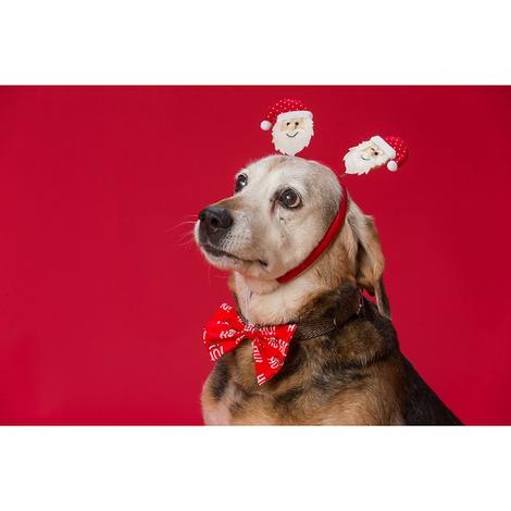 Ho Ho Ho Dog Bow Tie