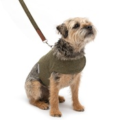 Mutts & Hounds - Forest Green Tweed Harness