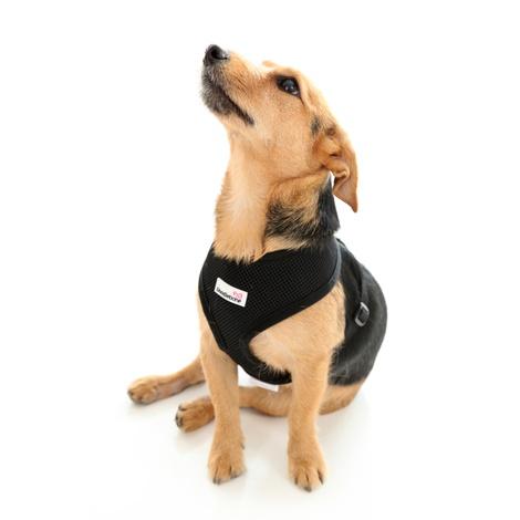 Airmesh Dog Harness – Black