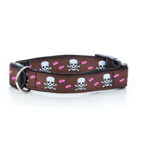 "Skulls Dog Collar - Chocolate Brown  1"" Width"