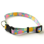 Yellow Dog - Circles Collar