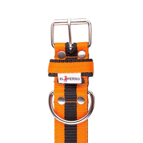 Juicy Strip Dog Collar - Orange 2