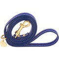 Sea Blue and Gold Luxury Leather Lead