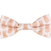 Teddy Maximus - Pineapples Bow Tie