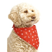 Pet Pooch Boutique - Red Anchors Dog Bandana