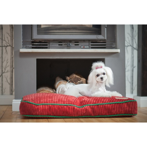 Ruby Deco Dog Cushion 3