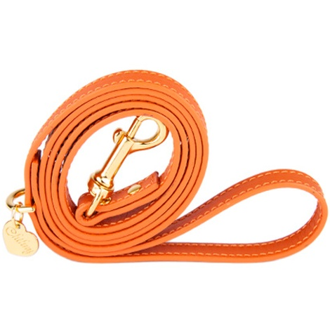 Orange and Gold Luxury Leather Lead