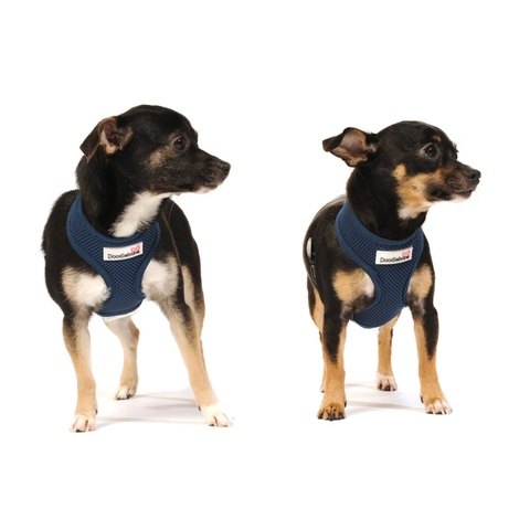 Airmesh Dog Harness – Navy 5