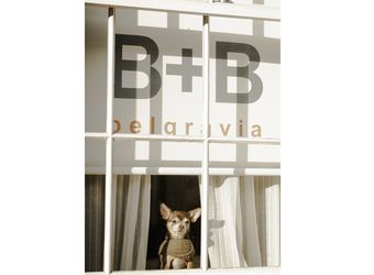 B+B Belgravia