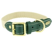 Clementine est. Dogs - Astor Webbing Dog Collar – Green