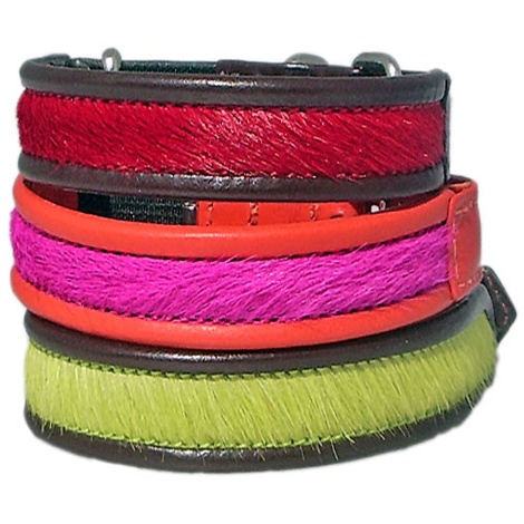 BrightSide Cat Collars
