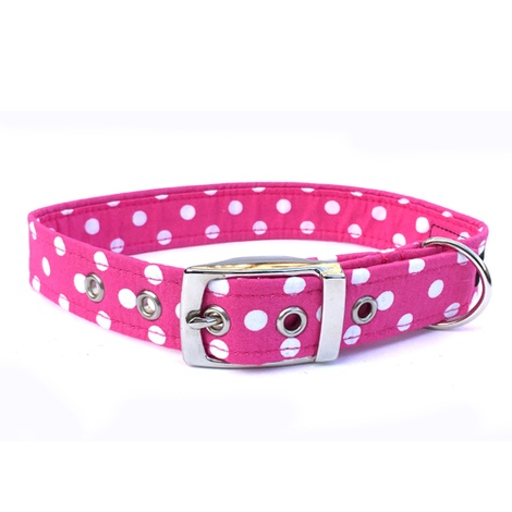 Minnie Buckle Dog Collar
