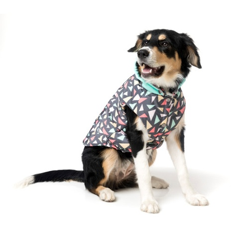 Rad Dog Jacket 3