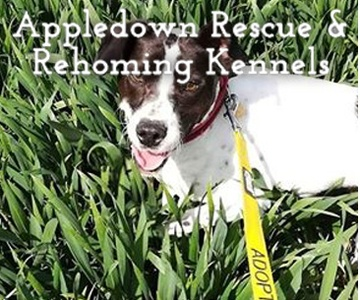 Appledown Rescue