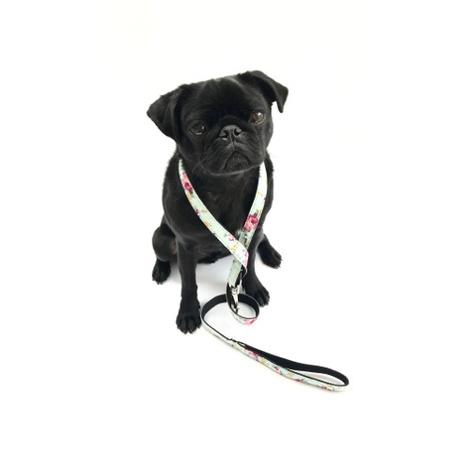 Dog Lead - Barnes 5