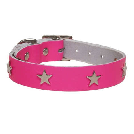 Galaxy Dog Collar - Pink, Nickel Stars
