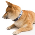 Blue Geo Dog Collar 6