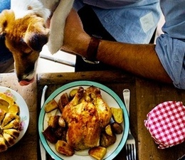 Inspiration 5: Dine with Your Dog