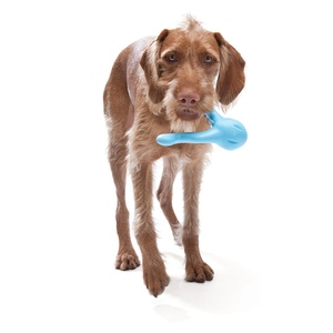 Zogoflex® Tizzi Dog Toy – Aqua Blue