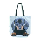 DekumDekum - Dash the Dachshund Dog Bag