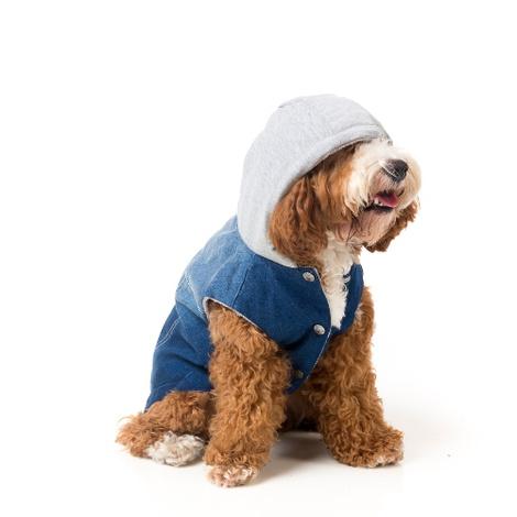 Crew Denim Dog Hoodie
