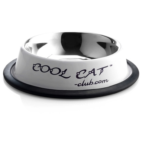 Cool Cat Sip & Snack Water & Food Cat Bowl in Lilac