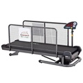 Medium Treadmill for Dogs 2
