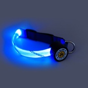 PetsGlow - Flashdance LED Dog Collar - Blue
