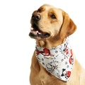 Man's Best Friend Dog Bandana